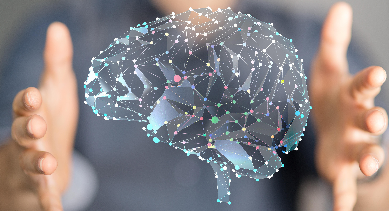 Modell av hjernen - Forsidebilde